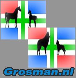 (c) Grosman.nl