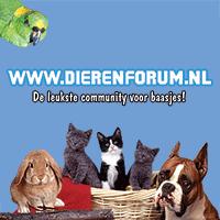 (c) Dierenforum.nl